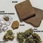 Bea Cukai Amankan Penyelundup Narkoba Asal Rusia
