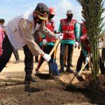 Peringati HUT Pekanbaru ke 273, Forkompimda Tanam 400 Pohon Kurma